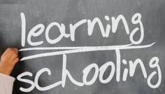Learning_schooling image