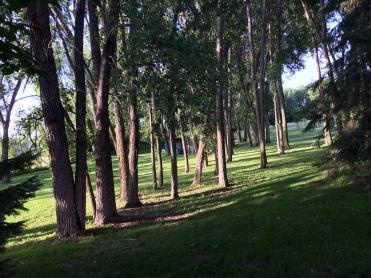 Fox Lake Park