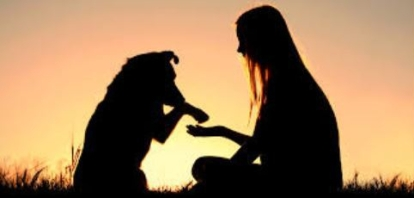 canine-compassion.jpg