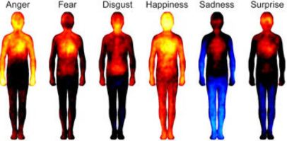 emotions body