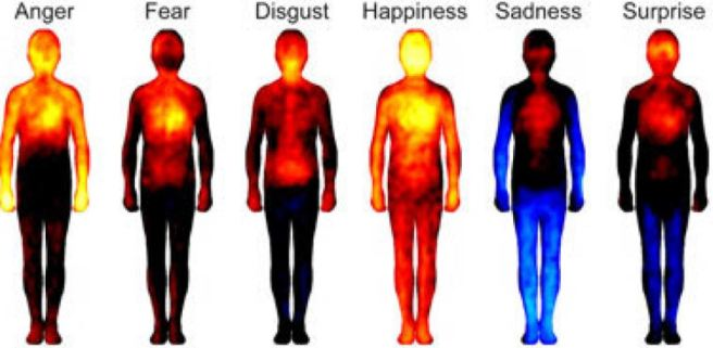 emotions body.JPG