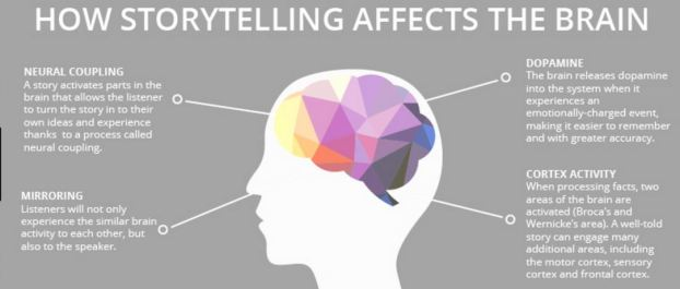 storytelling and brain