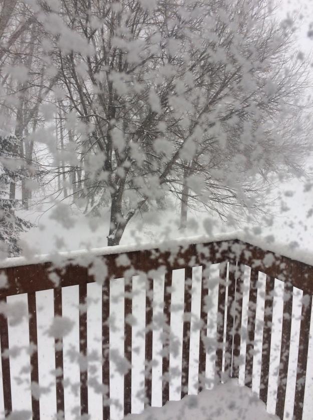 April 14 blizzard