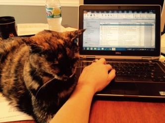 Cocoa helping with work