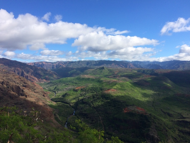 waimea canyon - jan 2017
