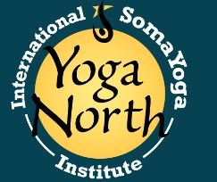 Yoga North darker snip