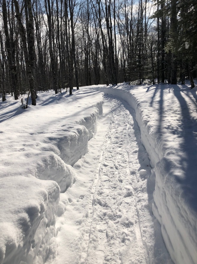Path in snow with bend in Schroeder